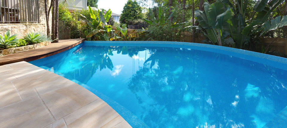 Lower North Shore Pool Design Modern Curved Pool Design