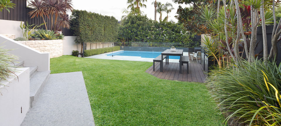 North curl curl pool design small backyard pool design - Small backyard landscape designs ...