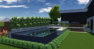 Infinity Pool with Tropical Garden